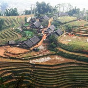 Vietnam: Sapa Rice Terraces